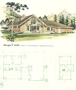 Vintage house plans 1960s fun vacation homes antique for Fun house plans
